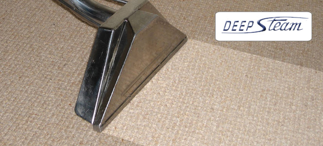 San Luis Obispo Carpet Cleaning Company Issues Report On