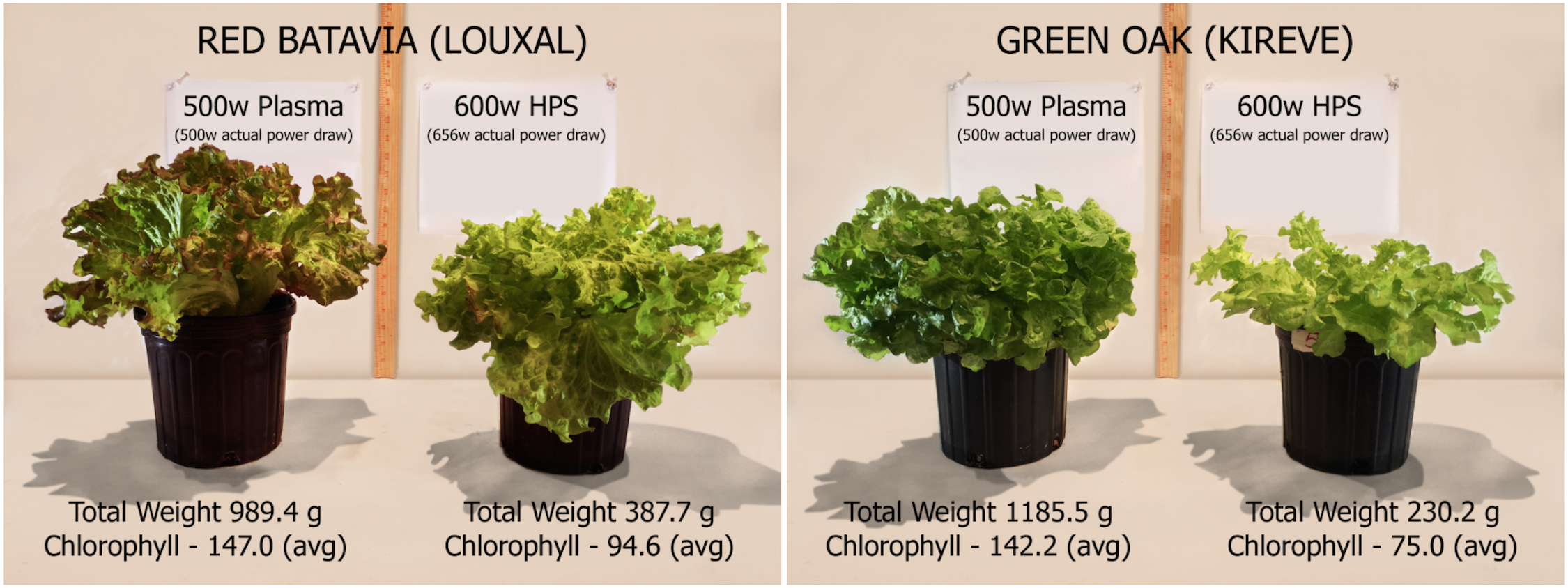 Chameleon® Plasma Grow Lighting Announces New Business Strategies for Plasma Grow Light  110yll