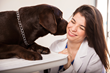 Ancon Medical will help detect diseases in Dogs and Cats