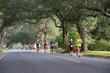 Pensacola Marathon racers run through a canopy of live oak trees in the historic East Hill neighborhood of Pensacola.
