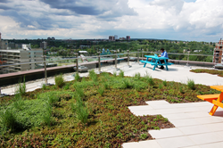 Vegetated Roof at Shaw Communications Corporate Headquarters in Calgary, Alberta