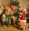 A Little Christmas Labrador Love for Duck Dynasty Phil