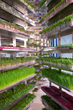 Urban Produce's patented High Density Vertical Growing System