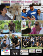 MPTF Supports the Health & Wellness of Pets at MPTF & Mauro Pet Care Dogfest – 2015 Recap