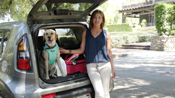 "Pet travel and safety expert Melanie Monteiro explains why advance planning will give you and your pets the best chance to stay safe in a new ""Emergency Preparedness with Pets"" video from Sleepypod."