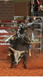 Dustin Ratchford's goal is to be one of the five riders to advance to Cleveland, Ohio on September 19th at the BlueDEF Velocity Tour.