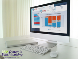 GMIS International Dynamic Benchmarking Reports