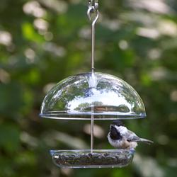 A Chickadee Enjoys Seed From Droll Yankees Cutest Chickadee Feeder