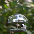 The New Cutest Chickadee Feeder by Droll Yankees is the Ideal Sized Bird Feeder for Small Spaces and Budgets But Big on Value For Bird Watchers of All Ages