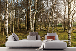 Nature wall covering and Flex sofa from Resource Furniture