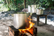 Ayahuasca boiling down the brew in the Amazon jungle