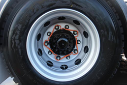 VIS Celebrates First Anniversary with The Squirrel: Wheel Safety ...