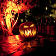 Hotel del Coronado Announces Hallo-wine & Spirits® - Witches & Warlocks