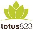 lotus823 Wins Silver in Bulldog Digital/Social PR Awards