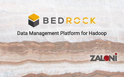 picture of bedrock with the Zaloni logo