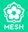 """MESH"" App Brings Social Planning, Travel and Productivity To Mobile Devices"