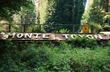 Monte Toyon