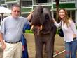 Elephants in the lobby of  Meridien Hotel