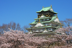 Japan Tours, Cherry Blossom season