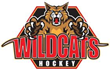 Wildcats Hockey Is Excited to Announce They are Partnering with Upside Group Franchise Consulting (USG) to Offer Franchise Opportunities