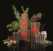 NEST Fragrances Achieves Holiday Home Fragrance Trifecta with Launch of New Hearth Collection