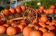 Pumpkinlicious 39th Annual Toccoa Harvest Festival Set for November 7-8, 2015