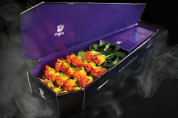 Roseshire Halloween Coffin