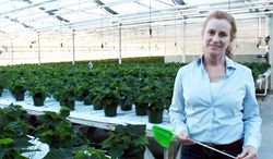 Dr. Melanie Yelton at work in a LumiGrow customer's greenhouse.