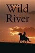 New Novel Recreates Turmoil of 19th Century America