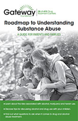 Free Guide to Understanding Substance Abuse, talking to teens about drugs and alcohol