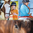 Dusty Wallace Insurance Announces Charity Drive to Fund Equine Therapy for Children with Special Needs