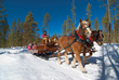 Sleigh rides winter park colorado