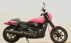 Custom motorcycle built by Biggs Harley-Davidson for Cancer Awareness