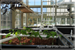 Solar Innovations, Inc. Implements Greenhouse Aquaponic System