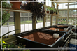 Sustainable Greenhouse Aquaponic Tanks at Solar Innovations, Inc. Greenhouse