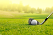 golf invention for practice