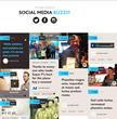 Embedded social media posts