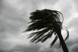Tips To Protect A New Home Against Hurricane Damage