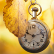 Brookhaven Retreat Raises Awareness of SAD at the End of Daylight Saving Time on November 1