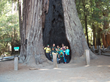 California Environmental Education School Announces Summer Camp Registration Opening November 16