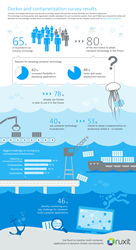 Docker Container Survey Infographic