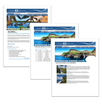 Cruise Dreams Announces Complimentary Group Travel Websites