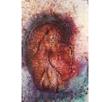 """Horse"" by Karen Salicath Jamali (48 x 72 in)"