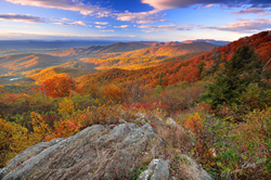 Culinary Experiences | Go Blue Ridge Travel
