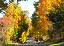 fall bike tour