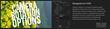 Pixel Film Studios FCPX TransText Volume 2 Plugin.
