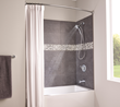 Moen® Attract™ hand shower with Magnetix™