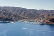 Take Flight On Catalina Island With New Falconry Experience