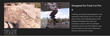 Final Cut Pro X ProEnergy Plugin from Pixel Film Studios.