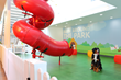 Industry Growth Leads to Office Expansion for Petplan